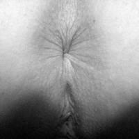 My wife's ass - Mesul