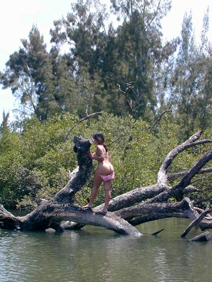 Pic #2 - Out On A Limb
