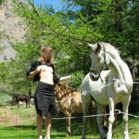 Los Caballos de Sandi - Nature