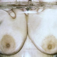 Medium tits of my wife - annmarie