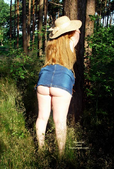 Pic #1 - Gina Deen 10 Sunny Morning In The Woods I