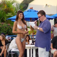 Paradise Asses - Bikini Contest!!!