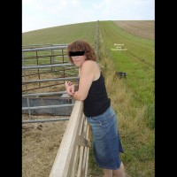 Cattle Pen Review