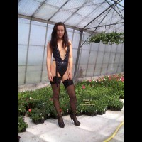 Naked At The Garden Centre