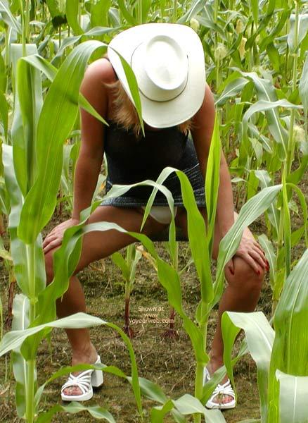 Pic #1 - Soo Hot N A Corn Field