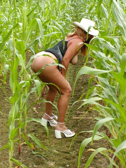 Pic #9 - Soo Hot N A Corn Field