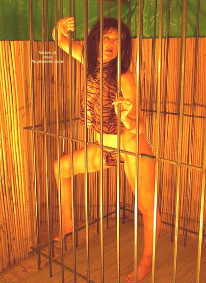 Pic #1 - Caged Desire  Invogue
