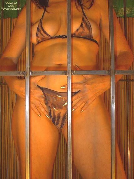 Pic #4 - Caged Desire  Invogue