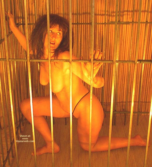 Pic #7 - Caged Desire  Invogue