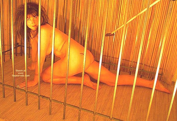 Pic #10 - Caged Desire  Invogue