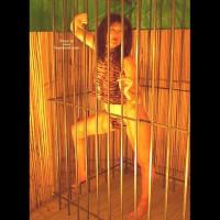 Caged Desire  Invogue
