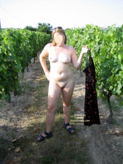 Pic #7 - Naked In The Vinyard