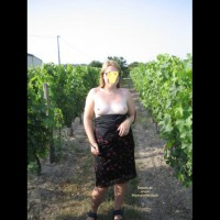 Naked In The Vinyard