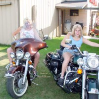 Harley 100th