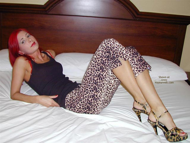 Pic #1 - Jayna Punk Rock Leopard Polka