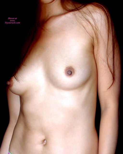 Pic #1 - Female Torso In Sepia - Brown Hair, Erect Nipples, Long Hair, Small Breasts , Smooth Skin, No Face, Smaller Tits, Dark Areolas