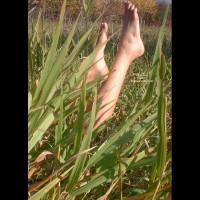 Legs In Grass