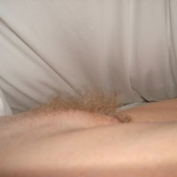 Pussy Mound And Bush