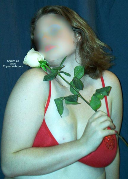 Pic #2 - A Rose By Any Other Name