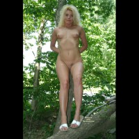 Full Frontal Nude In Tree - Blonde Hair, Shaved Pussy, Small Breasts, Naked Girl, Nude Amateur
