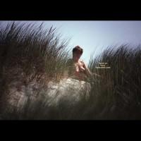 *Sk Danish Dunes Ii
