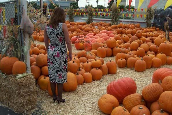 Pic #1 - *NY Upskirt at The Pumpkin Patch!