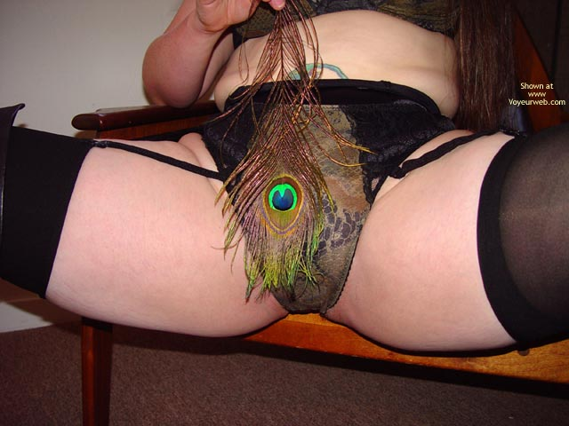 Pic #7 - Bbw Vicki'S Peacock Feather