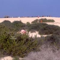 On A Beach Fuerteventura