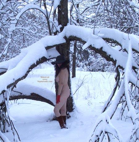 Pic #2 - *CH Flashin Ann Plays in The Snow!