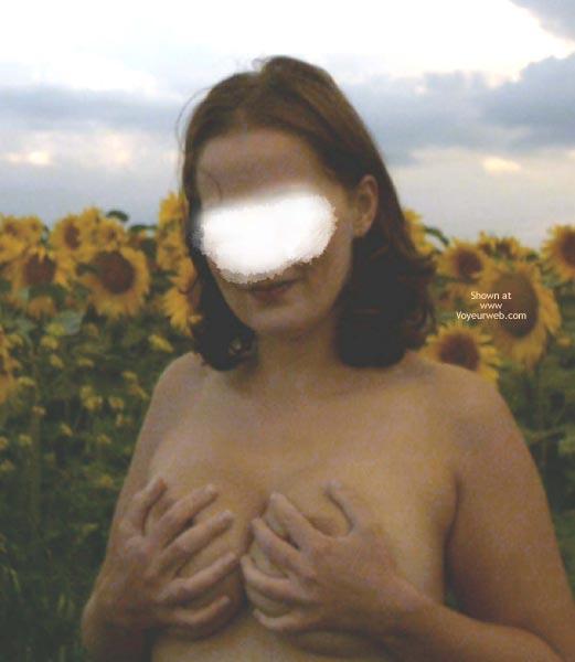 Pic #3 - Sunflowers Field 2003, 26 yo, Germany