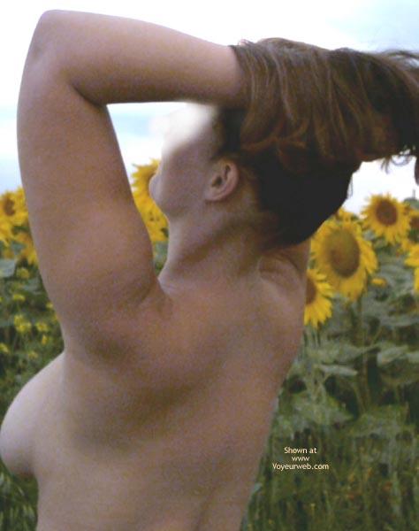 Pic #5 - Sunflowers Field 2003, 26 yo, Germany