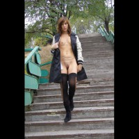 Flashing Tits And Pussy - Brown Hair, Exhibitionist, Flashing, Shaved Pussy, Small Breasts, Small Tits, Stockings
