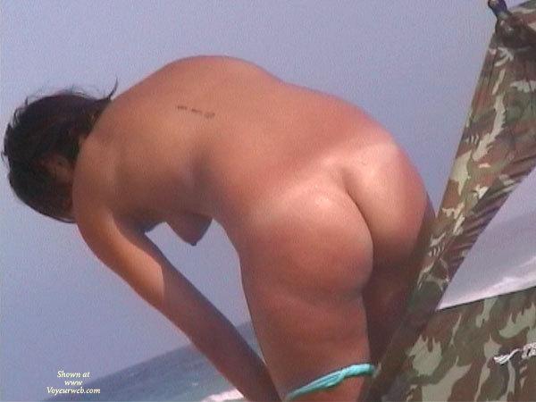 extreme wild porn gif