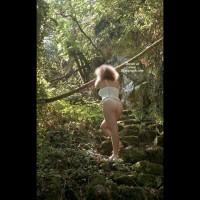 Bussaco Woods