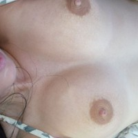 Naughtys Nipple Lickin Good!!!