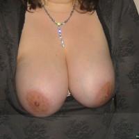 Croatian Tits