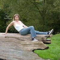 Louise's Fallen Tree 1