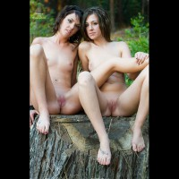 Two Shaved Pussies - Brown Hair, Dark Hair, Long Hair, Shaved Pussy, Small Tits, Naked Girl, Nude Amateur