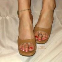 Robin Feet And Legs