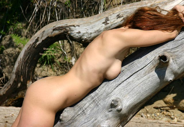 Pic #6 - Sienna Narrows