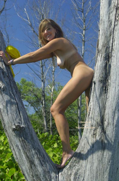 Pic #4 - Merci Climbs A Tree