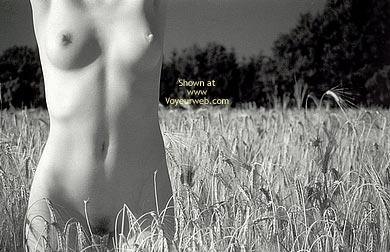 Pic #10 - Csilla Selected Postcard 2