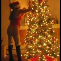 Bambi's Merry Christmas