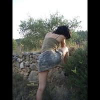 *Su Katy Is Picking Olives